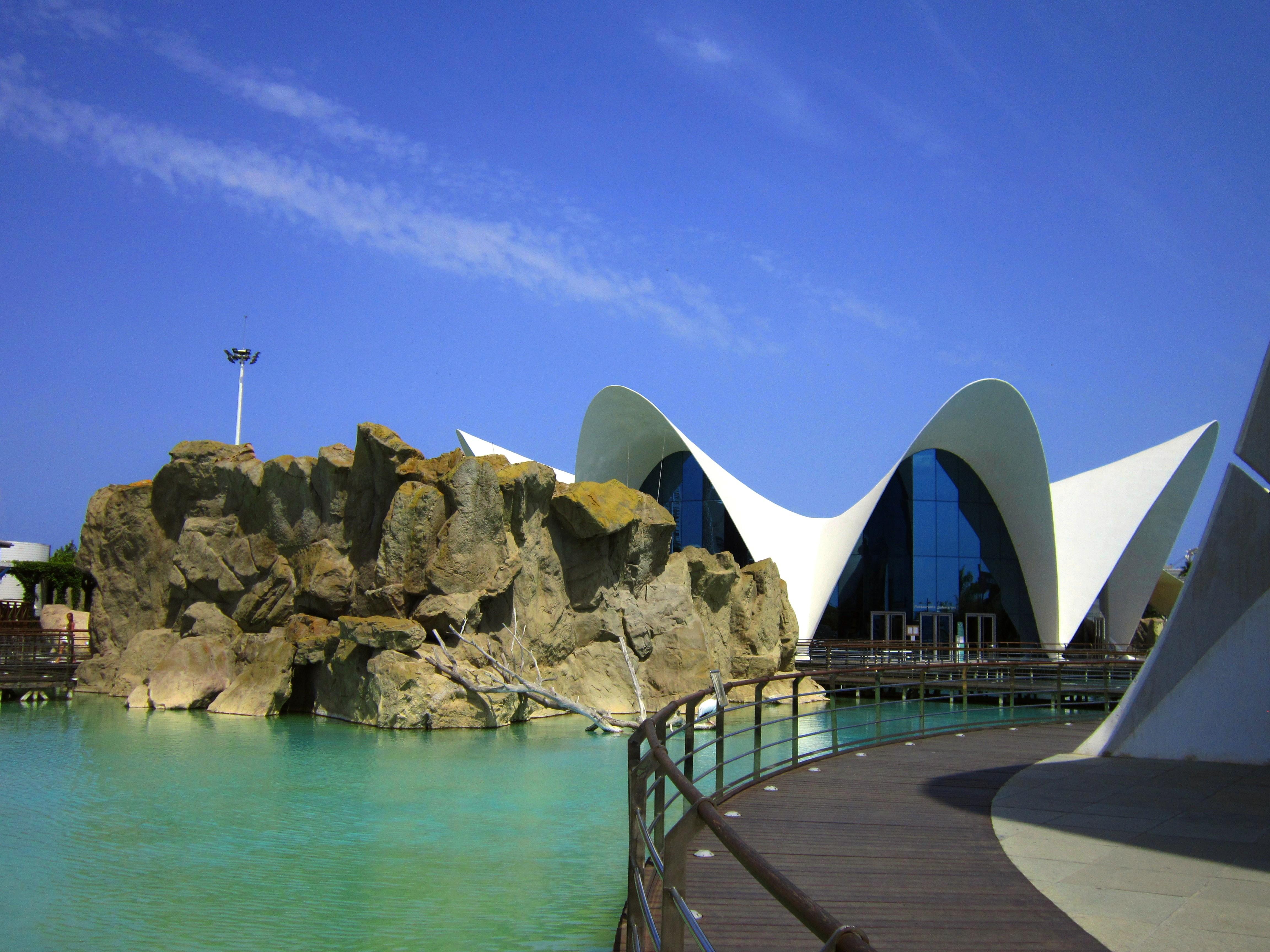 Океанариум - составная часть Города Наук и Искусств